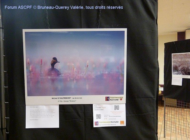 Le gagnant du deuxième prix série «Oiseaux», Michel d'Oultremont.